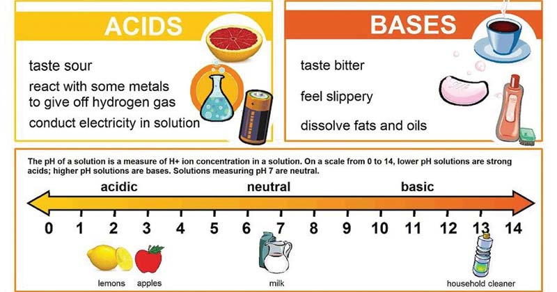 Differences between Acid and Base