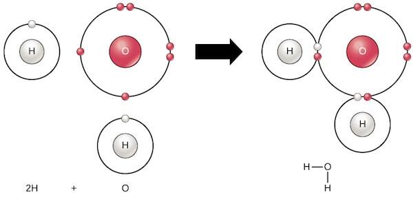 Polar Covalent bonding in water