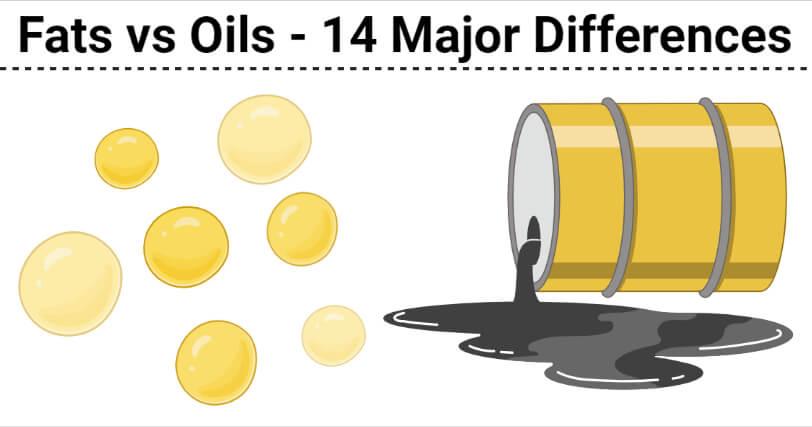 Fats vs Oils