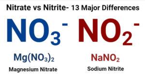 Nitrate vs Nitrite