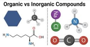 Organic vs Inorganic Compounds