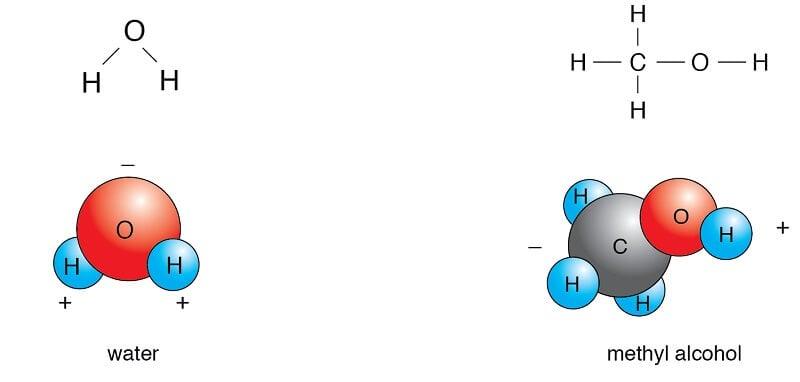 Examples of Polar Molecules