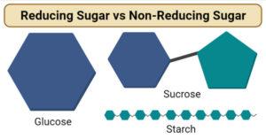 Reducing Sugar vs Non-Reducing Sugar