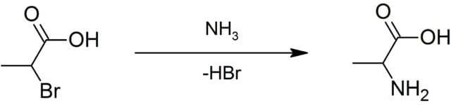 Alanine Biosynthesis